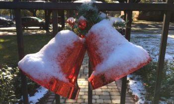 Season's Greetings from Cornerstone Gardens!
